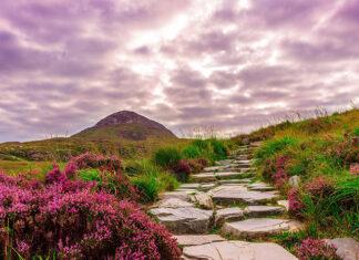 Dzika Irlandia, czyli piękne i naturalne miejsca warte odwiedzenia